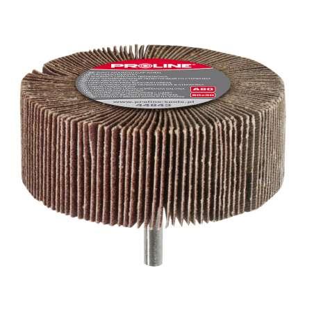 Ściernica listkowa trzpieniowa 80x30mm gramatura 120 Proline 44845